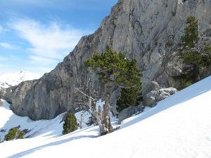 Chambre Montagne